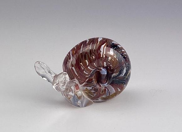 Snail, white w/red tones