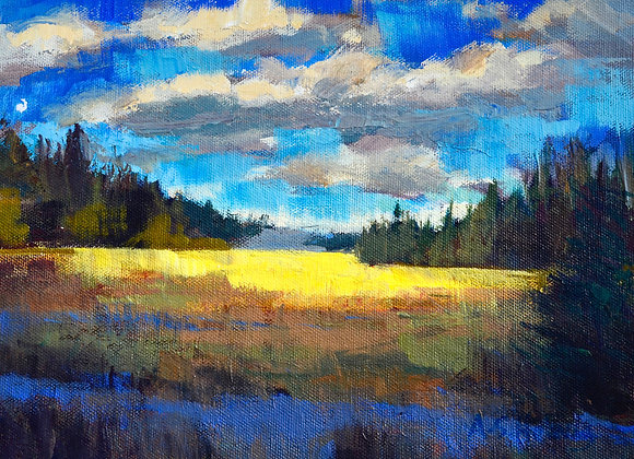 Cyprus Hill's View, from a residency I did at Cyprus Hills, Saskatchewan