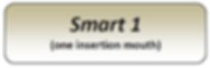 smart 1.png