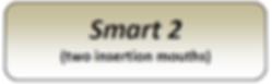 smart 2.png