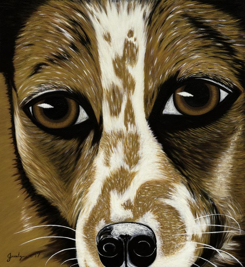 Moxi Dog