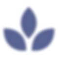 MBSR | Achtsamkeit | Meditation | regerelmäßige Kurse Onine und in Münster