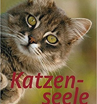 Katzenseele