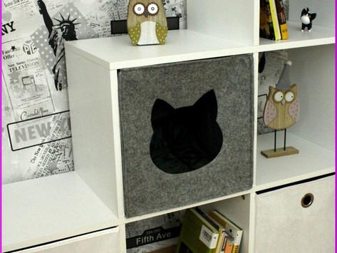 Regal-Katzenhöhle aus Filz