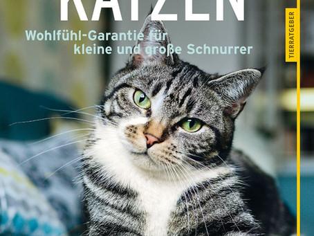 Katzen - Wohlfühl-Garantie für kleine und große Schnurrer