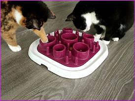 Katzen Leckerlie Snack Liste