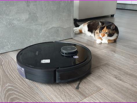 Saugroboter im Katzenhaushalt- Ratgeber und Empfehlung