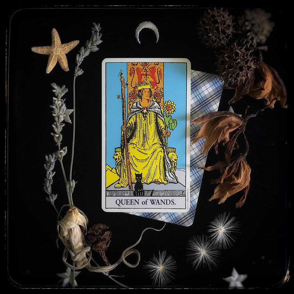 Tarot Rising Utopia, Apprendre le Tarot, Débuter le tarot, tarot pour débutant