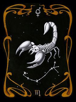 Scorpion.web.jpg