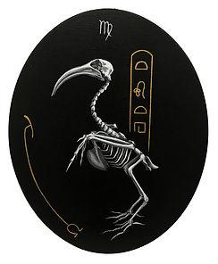 Delphyne V., art, artiste, artiste française, peinture, acrylique, paris, surréalisme, lowbrow, pop surréalisme, contemporain, moderne, galerie, os, squelette, bestiaire, sacré, alchimie, pagan, sorcière, crâne, biodiversité, préservation, funny bones, anatomie, planche anatomique, squelette ibis, noir, blanc, doré, égypte, thoth, dieu égyptien