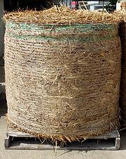 Sugar Cane Round Bales.jpg