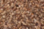 Cypress Chip.jpg