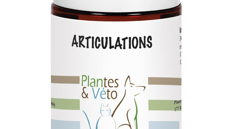 ARTICULATIONS - Plantes&Véto