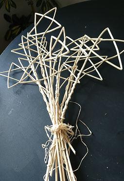 White willow stsas.jpg