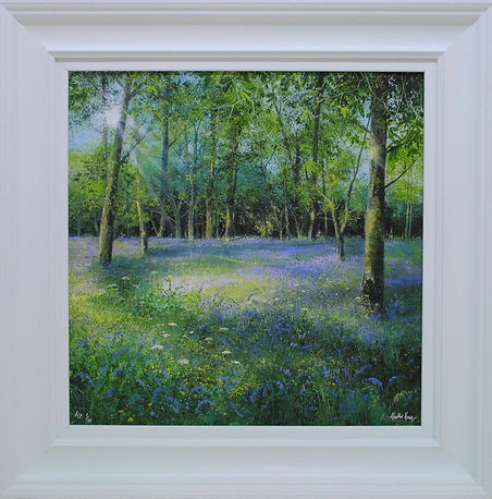 Bluebell in the Glade
