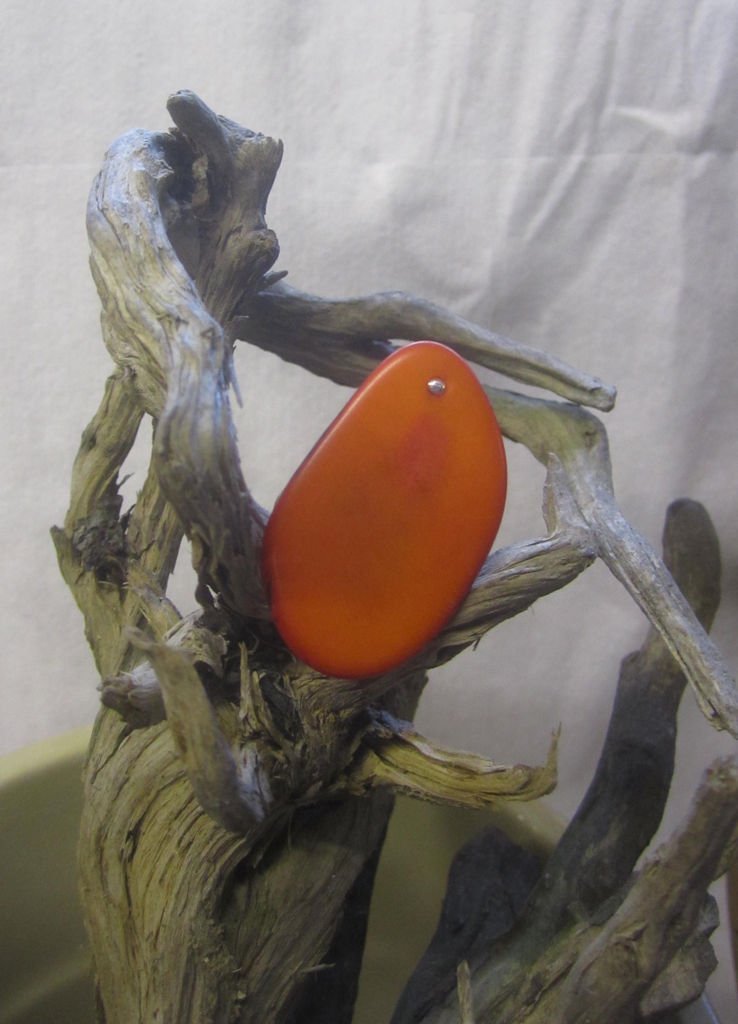 ivoire végétal orange