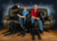 Flat-Coated Retrievers, Flatcoat, Flat-Coat, Radford Flat-Coated Retrievers