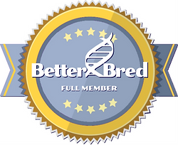better bred logo.png