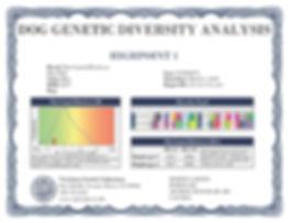 Axel DNA Certificate.jpg