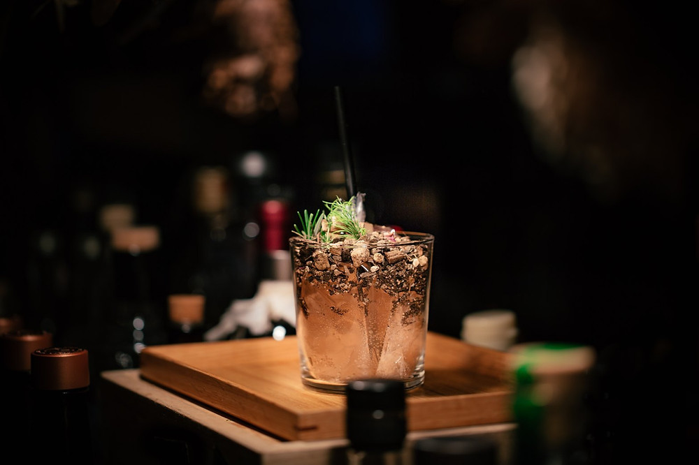 Plant in cocktail glass at bar