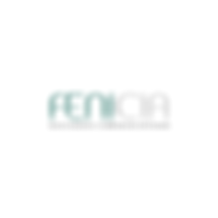 logo-fenicia.png