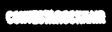 Logos UBV White Vectors-21.png