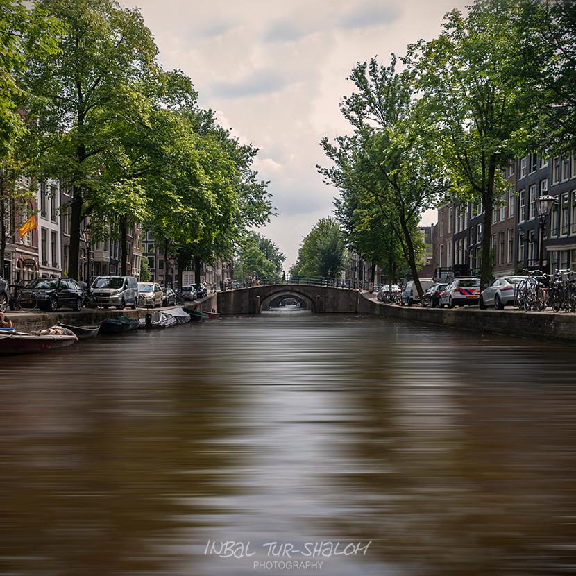 תעלה באמסטרדם עם עצים ירוקים על שתי הגדות