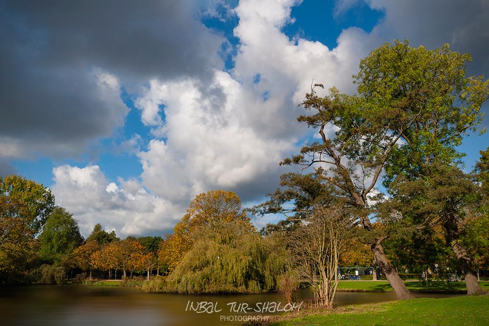 עננים, אגם, עצים עם עלי שלכת Vondelpark אמסטרדם