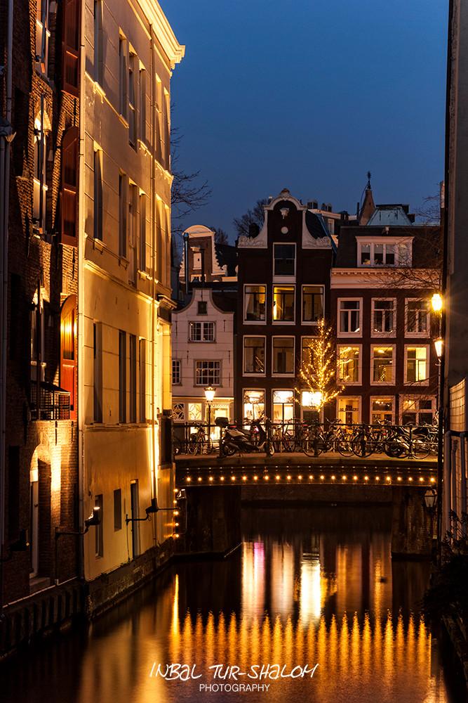 night photo a lightened bridge with light installation on a tree in Amsterdam December 2016