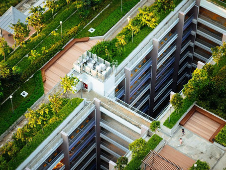 Healthy Environments: Green Roofs that combat climate change