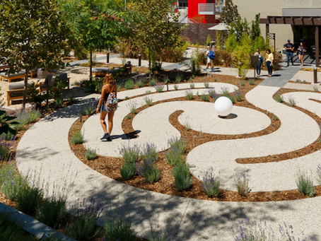 Creating healthy learning environments with active design