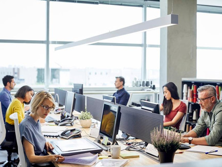 Hybrid workplace rooted in sustainability
