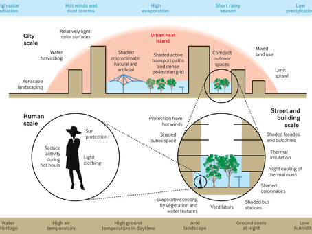 How to design healthy spaces in cities that experiment with hot and dry climates?