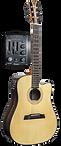 Amatis Guitar DSR26 - Acoustic Electric Guitar