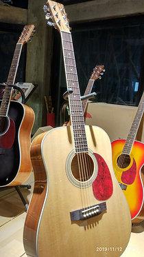 Tokai Cat's Eyes CE25 Acoustic Guitar - Natural