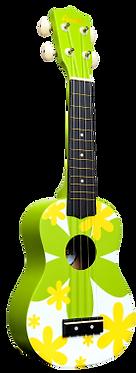 DDUK6-Amahi Ukulele Green Flower