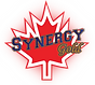 Synergy Gold Logo.png