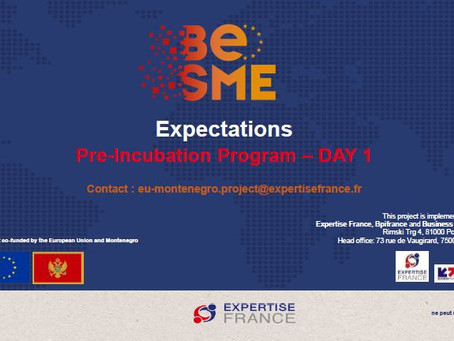 """The BeSME project is holding """"Pre-incubation"""" programmes for start-ups in Montenegro"""