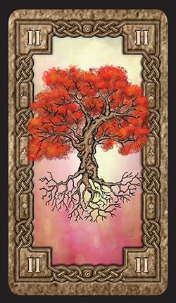 Mystic-Valley_Vales-L2_-Card-Back_Web-1