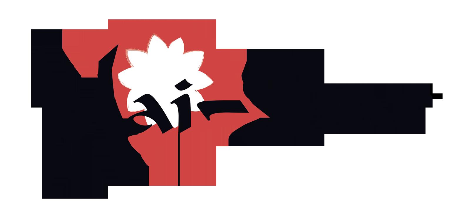 Mai-Star-logo