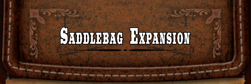 DT_SaddlebagExpansion