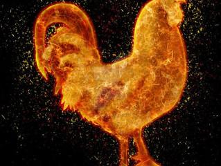 L'oroscopo dell'anno del Gallo di Fuoco/ The Year of the Rooster, Chinese Horoscope