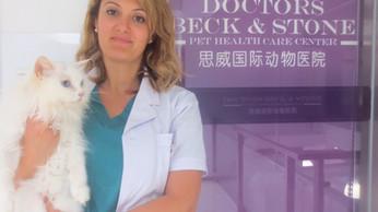 Una veterinaria italiana qui in città/ An Italian Vet here in town