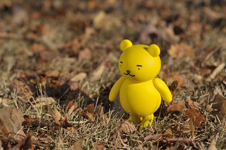 今日もまっすぐ歩いていく黄ぐまくん