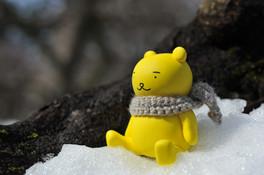 春を待つ黄ぐまくん