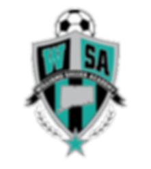 Williams Soccer Academy - Windsor CT