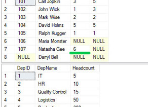 Types of SQL Server Joins With Examples