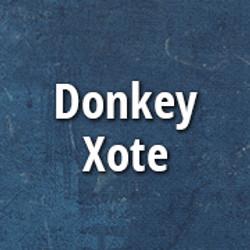 donkey_xote_p