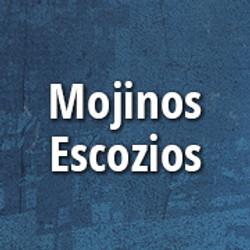 mojinos_p