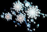 logo_christmas.png